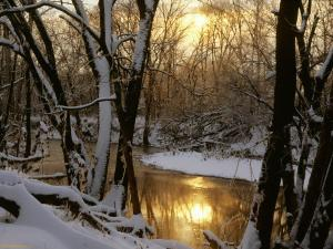 winter-scenes-nature-harpeth-river-sunrise-177194[1]