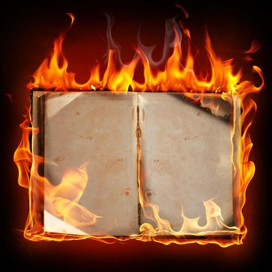 27962-the-burning-of-books[1]