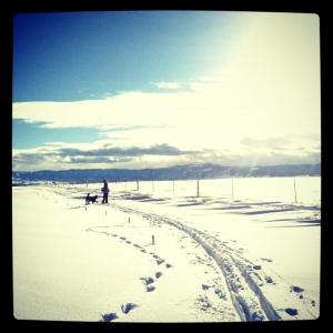 jenny ski